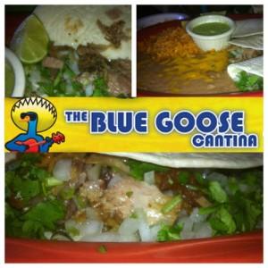 Blue Goose Addison carnitas