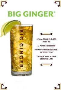 2 gingers big ginger recipe