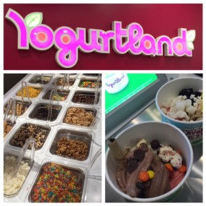 yougurtland opens at galleria dallas via dallasfoodnerd.com