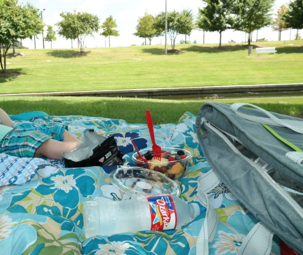 Dallas Food Nerd : #FromHereForHere Ozarka Vitruvian Park