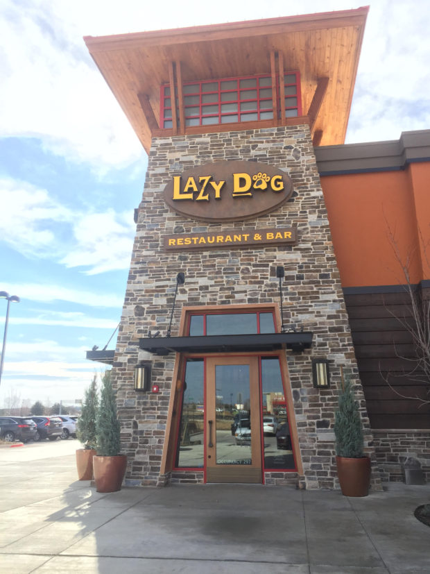 Lazy Dog Euless